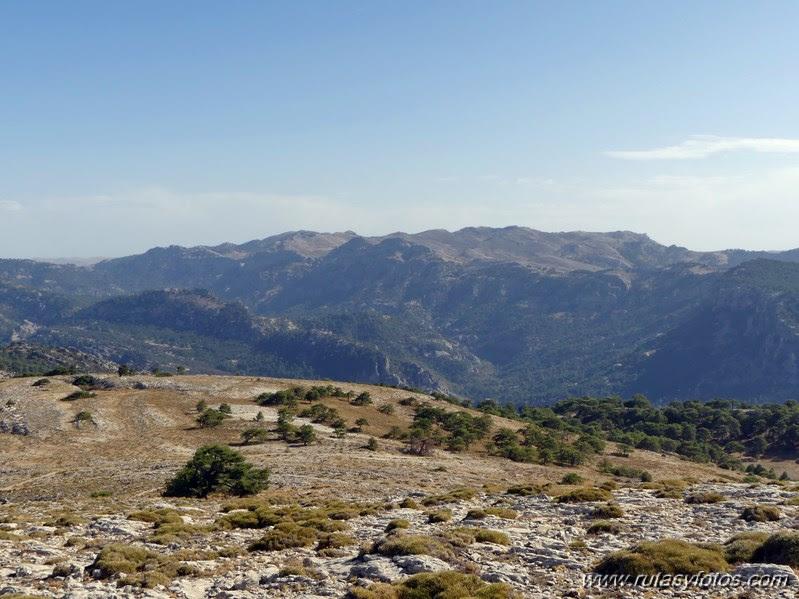 Pico Cabañas