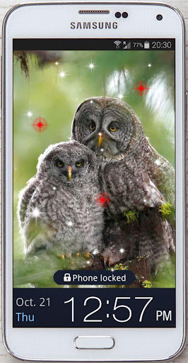 Owls Forest live wallpaper