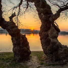 Dunaj  večer by Ján Hrmo - Nature Up Close Water ( voda, rieka, večer, dunaj, slnko )