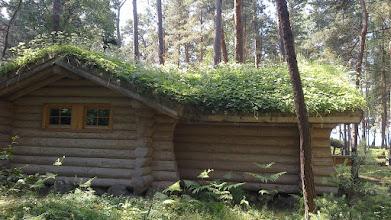 Photo: Czyż nie pomysłowe pokrycie dachu