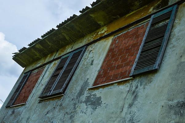 Windows di acquario