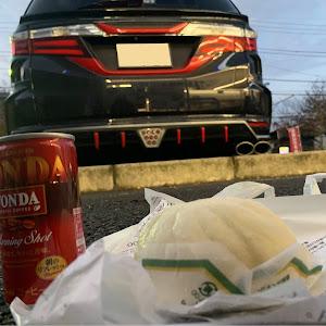 オデッセイ RC1 アブソルート 2013のカスタム事例画像 マキバぱぱさんの2018年12月03日06:19の投稿