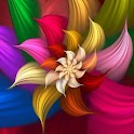 Flowers Hd Wallpapers icon