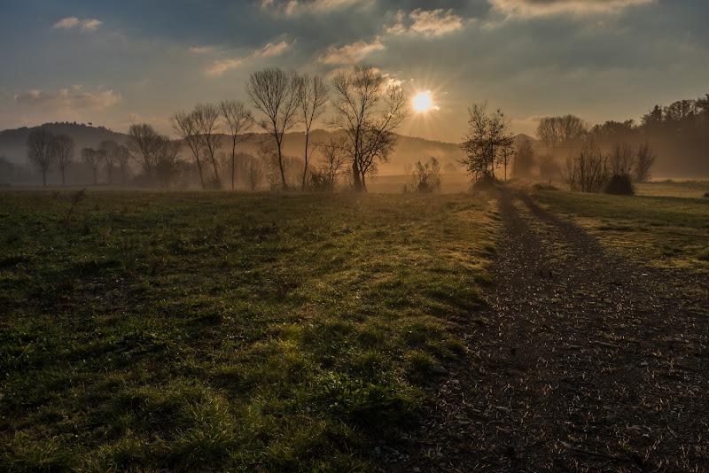 Ultima nebbia mattutina di Marco Lorini