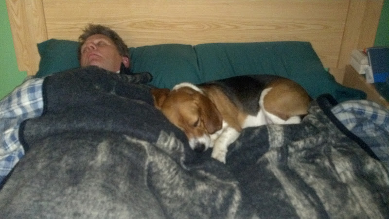 Photo: Riley and daddy gone to bed for the night