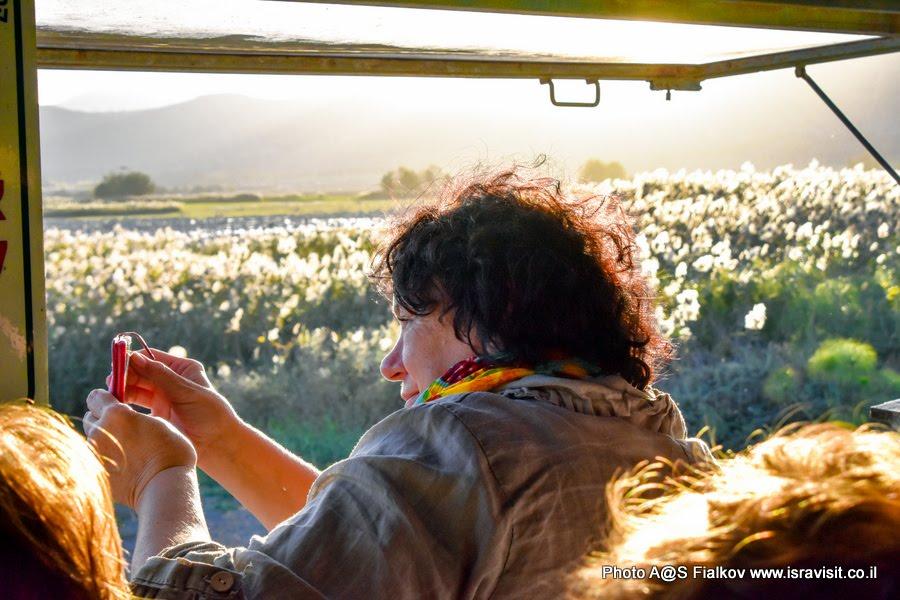 Гид в Израиле Светлана Фиалкова на экскурсии в заповедник птиц Хула в Израиле.