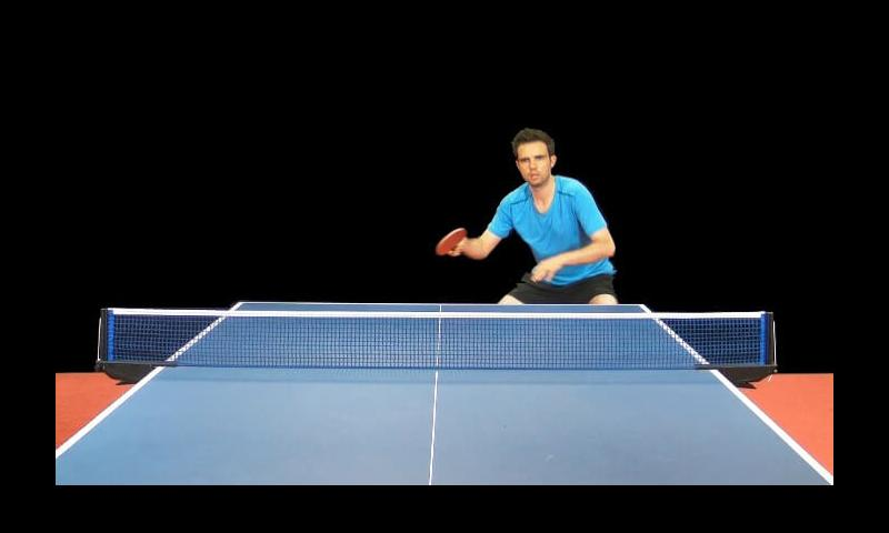Table Tennis Edge- screenshot