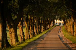 Zufahrt Tillysburg