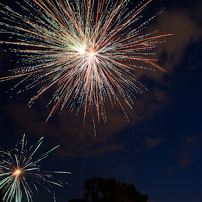 Fireworks by Michael  Kitchen - Abstract Fine Art ( exposure, d700, colorful, color, fireworks, night, long, nikon, fire )