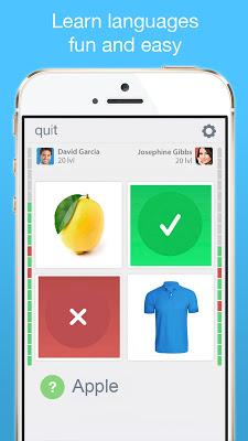 Lingo Vocabulary Trainer - screenshot