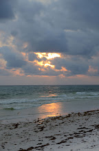 Photo: St. Andrew's State Park