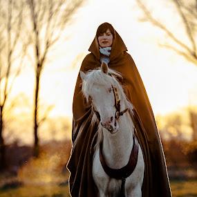 Rebeh al Mansur (approved berber stallion) by Jens Klappenecker-Dircks - Animals Horses