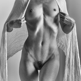 by Shawn Crowley - Nudes & Boudoir Artistic Nude ( fit, b&w, lean, torso, strong woman, sheer, nude )
