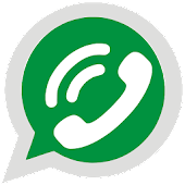Dual messenger for whatsapp
