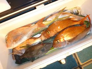 Photo: 釣果発表!オオツさんのクーラーBOX 仕掛けもたくさんなくなりました。