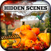 Hidden Scenes - Autumn Colors