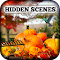 Hidden Scenes - Autumn Colors 1.0.1 Apk
