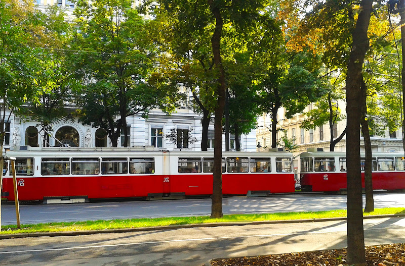 Tram Vienna di oiseneg