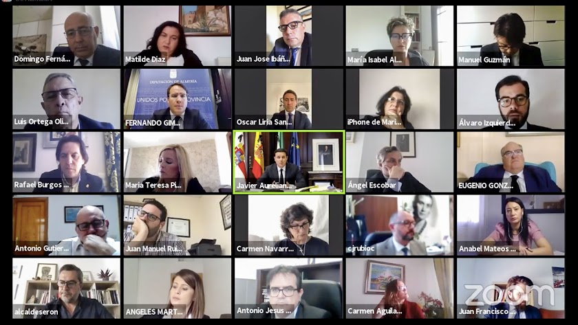 Conexión telemática a través de la Diputación.