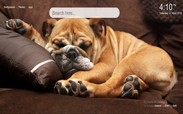 Cute Dogs HD Wallpaper New Tab