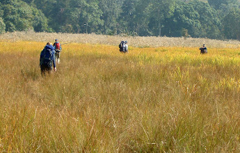 Photo: Finally we arrived at the grassland of Klong E Tow - not far from the road now