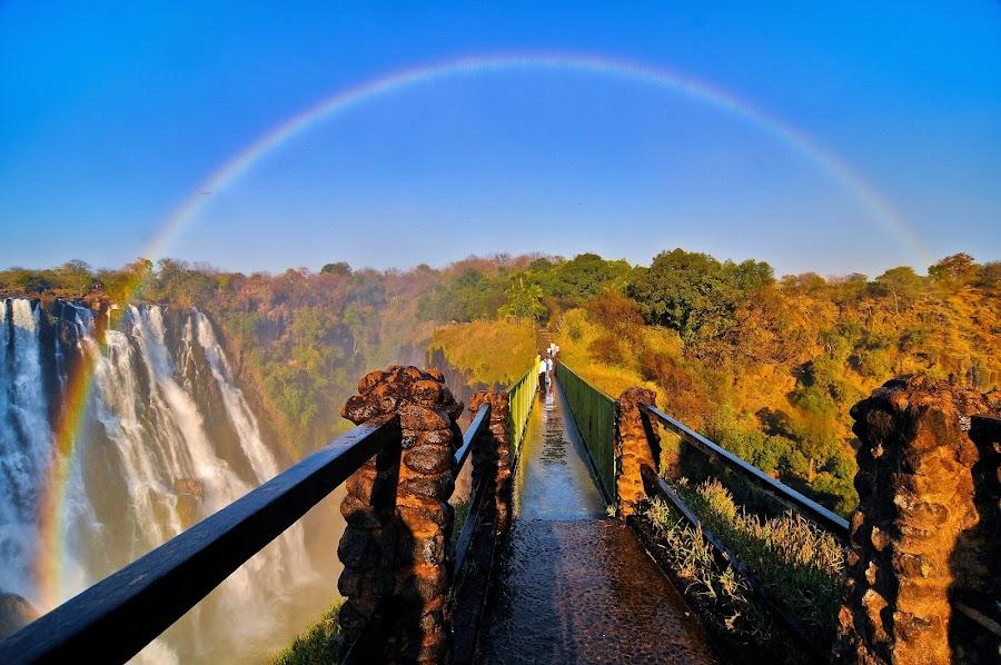 Victoria's Bridge of Rainbows by James Bokovoy - Travel Locations Landmarks ( zimbabwe, victoria falls, zambia, waterfall, travel, bridge, vic falls, africa, rainbow, rainforest, mist )