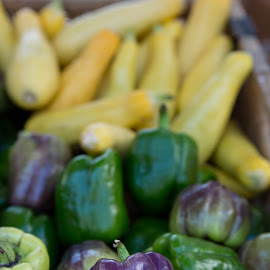 Peppers by Michele Williams - Food & Drink Fruits & Vegetables ( peppers, market, purple, green, vegetables, yellow, shiny )