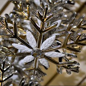 snowflake by Nic Scott - Public Holidays Christmas ( decoration, snowflake,  )