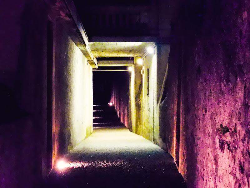 Into the light di mary_bassi