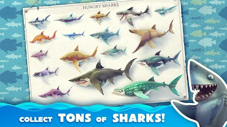 Hungry Shark World APK screenshot thumbnail 1