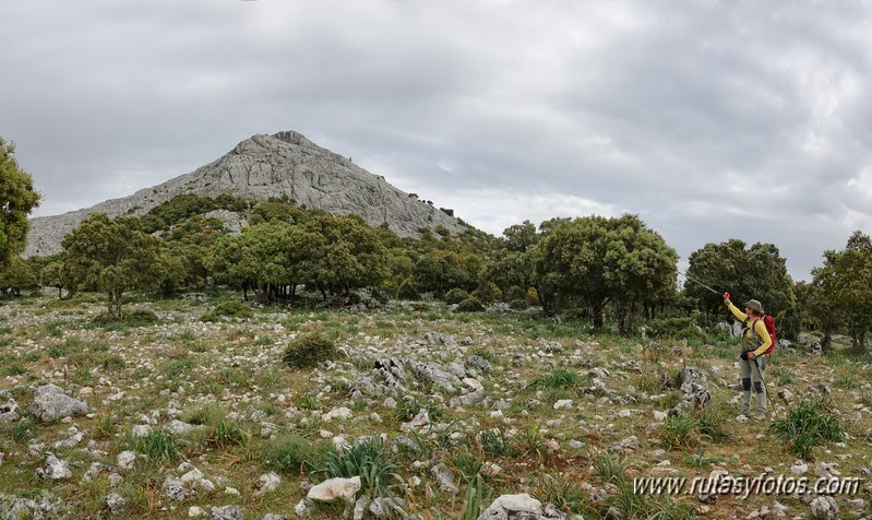 Nueve picos de la Sierra del Endrinal