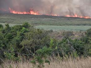 Photo: Bush fire...