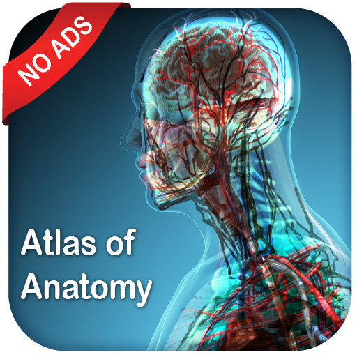 Gray's Atlas of Anatomy Pro (No Ads) APK Cracked Download