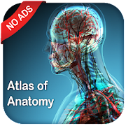 Gray's Atlas of Anatomy Pro (No Ads)