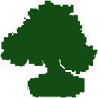 Bonsai Droid icon