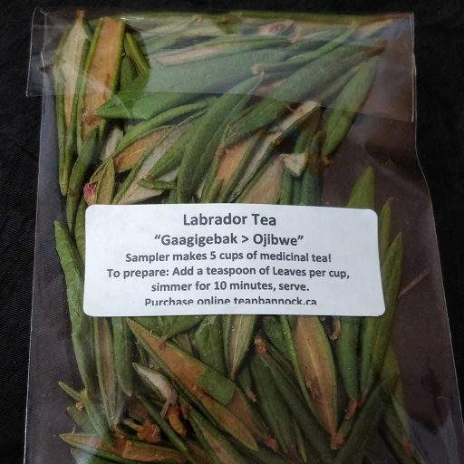 Labrador tea sampler