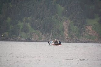 Photo: i was pretty upset how close this boat drove towards the whale. theres gotta be a law against this.