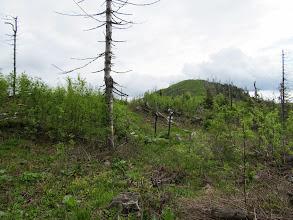 Photo: 24.Teraz zmieniam szlak na czerwony - Cestę hradinov SNP.