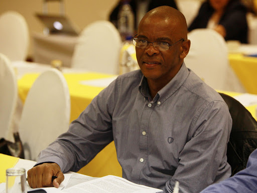Ace Magashule said kings and chiefs are rightful custodians of communal land.