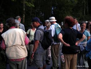 Photo: Caterpillar walk participants
