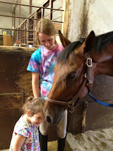 Photo: Sophie helps Greta get better acquainted with Mission. Verrill Farm stables. Concord, Massachusetts.