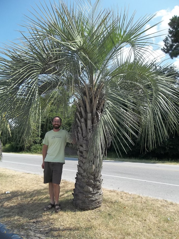 Ben with the first palmettos of the trip