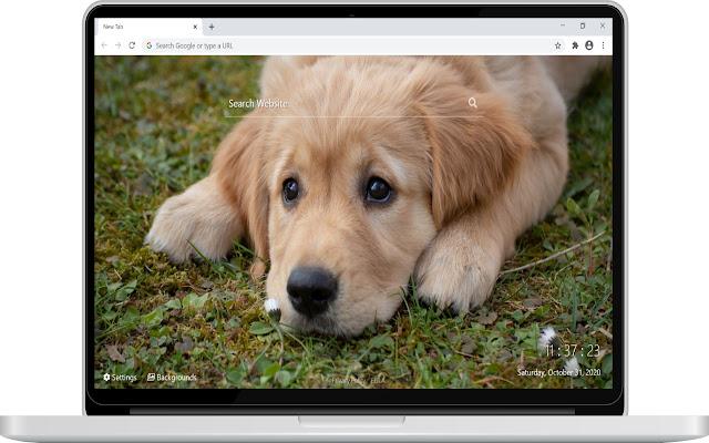 Dog & Puppies HD Wallpaper New Tab