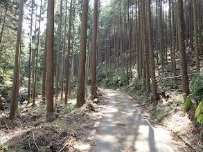 林道出合(東海自然歩道)