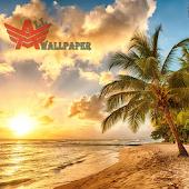 All Beach Wallpaper