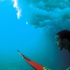 Dcukdive by Paul Kennedy - Sports & Fitness Surfing