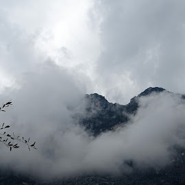 Fog in mountains of Riva del Garda by Patrizia Emiliani - Landscapes Mountains & Hills ( riva del garda, fog, italy, mountais,  )