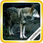 Jigsaw Puzzles: Wolves icon