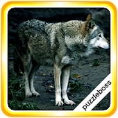 Jigsaw Puzzles: Wolves