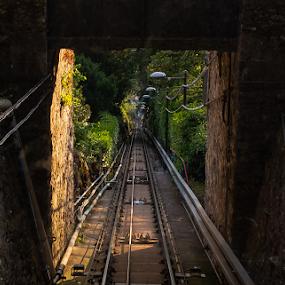 Como Railway Track by Anastasis Agathokleous - Transportation Railway Tracks ( como, green, railroad, brick wall, nature, trees, mountain, sllope, downslope, station, railway, lake, wall, italy, pipes )